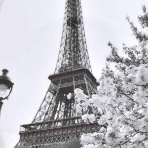 Paris City