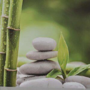 Zen and Co