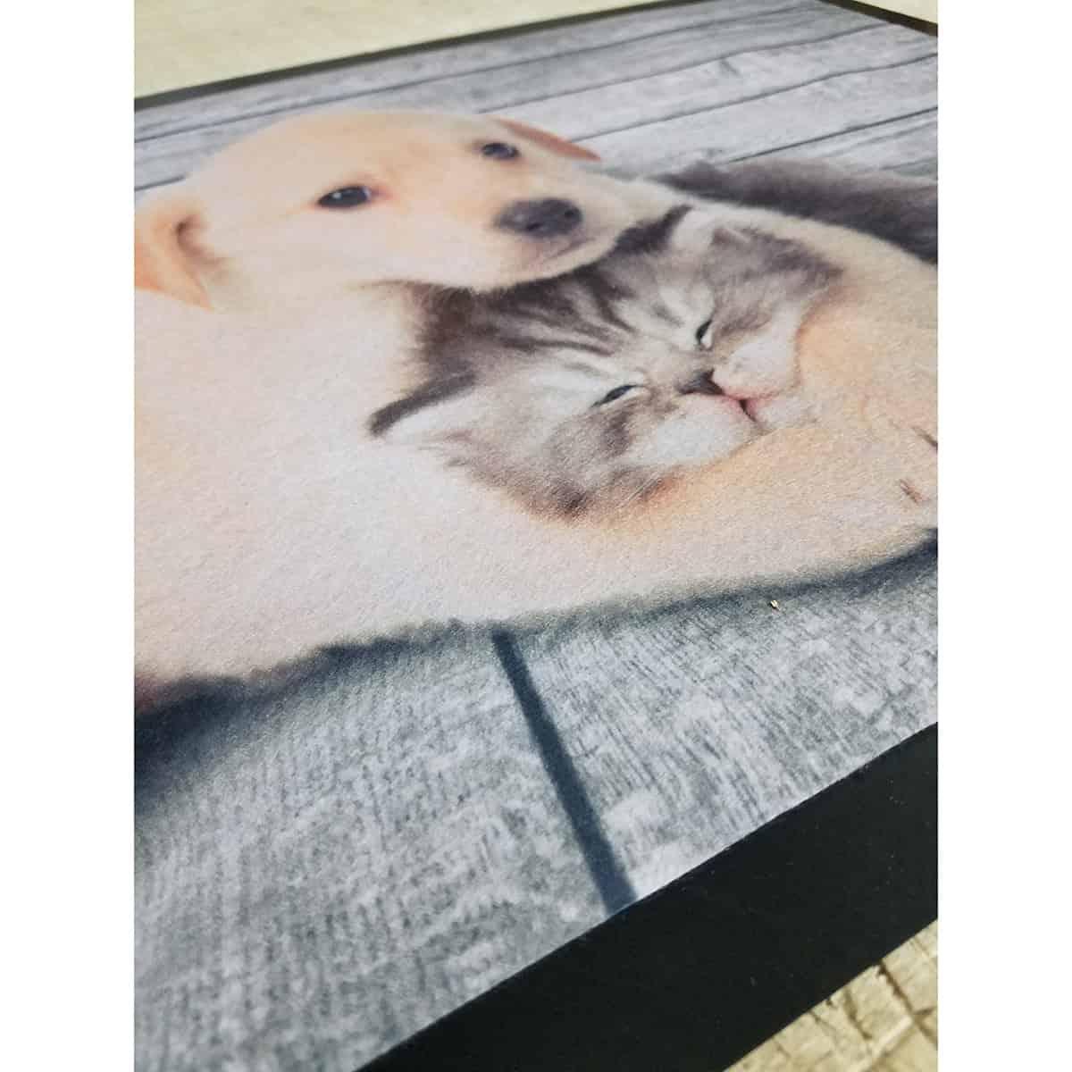 Indoor Printed Door Mat Dog Cat PVC Polyester Rug 24x16